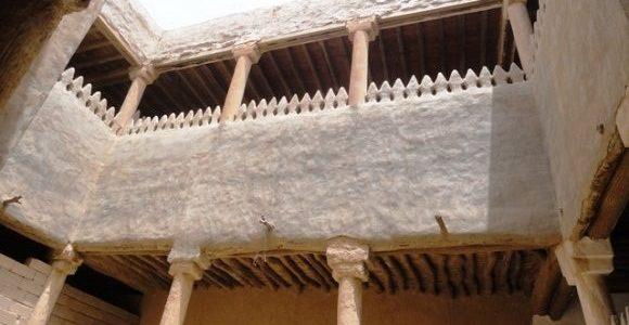 Photo of النمل الابيض ينتشر بمحافظات مصر والوزارة تتابع