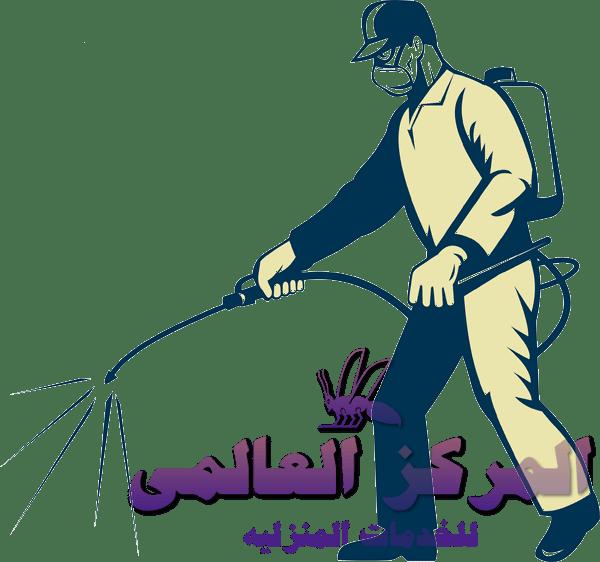 افضل شركة مكافحة حشرات جنوب الرياض, افضل شركة مكافحة حشرات جنوب الرياض, شركة المركز العالمي