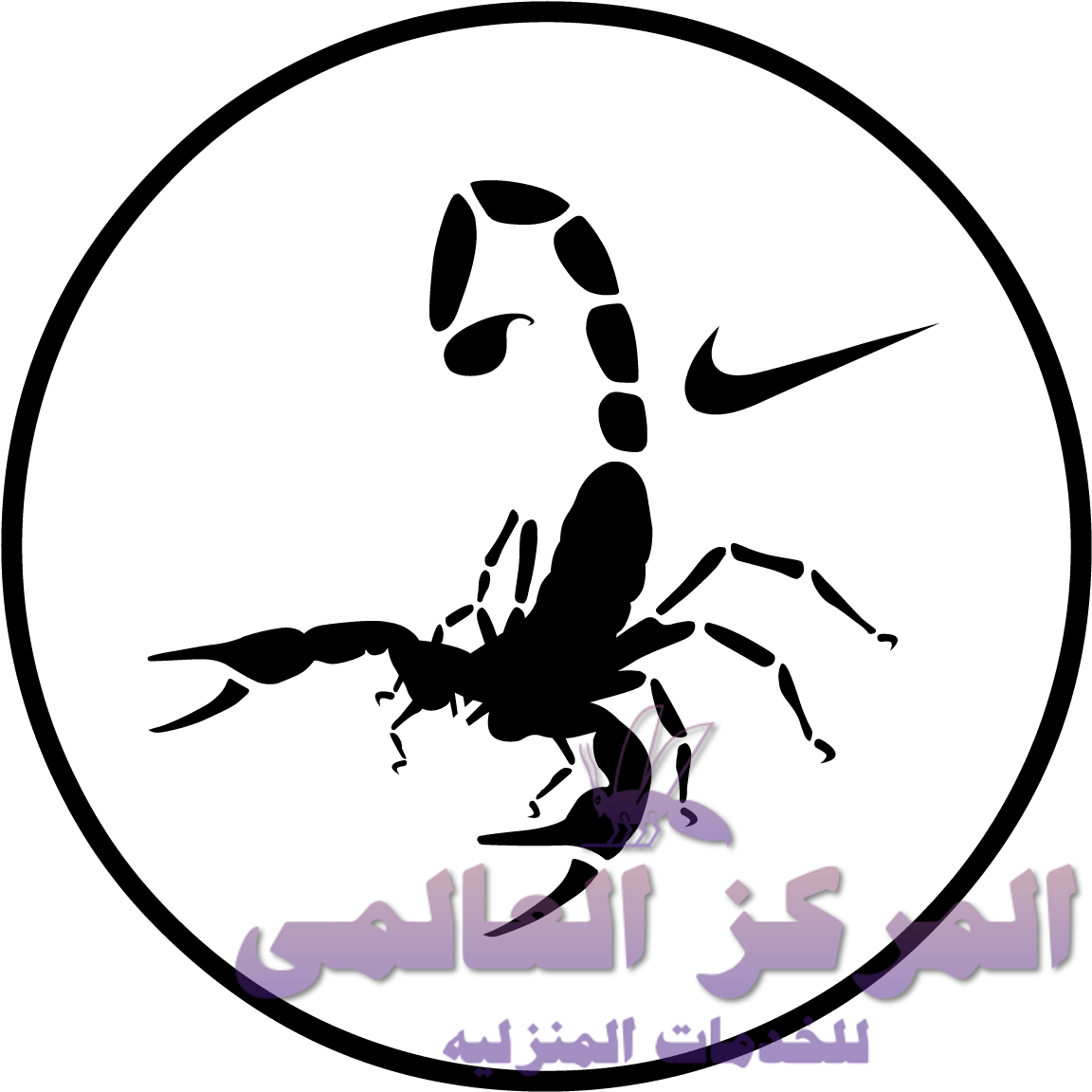 افضل شركة مكافحة حشرات شرق الرياض, افضل شركة مكافحة حشرات شرق الرياض, شركة المركز العالمي