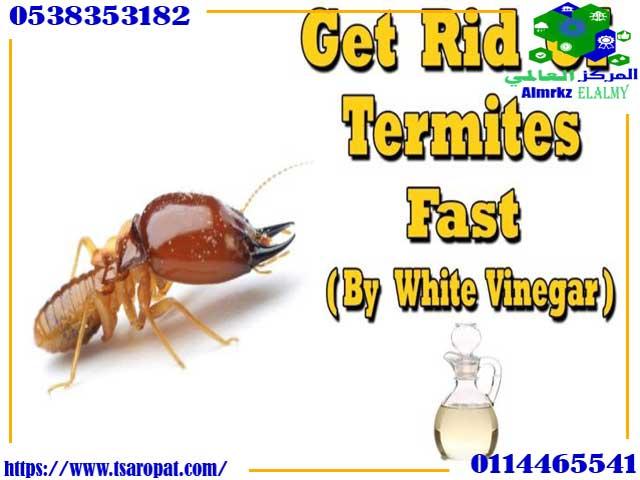 الخل والنمل الابيض, الخل والنمل الابيض وكيفية استغلاله للقضاء على النمل الأبيض, شركة المركز العالمي