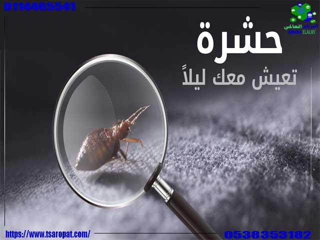 حشرات الفراش البيضاء, حشرات الفراش البيضاء وكيفية التخلص منها, شركة المركز العالمي