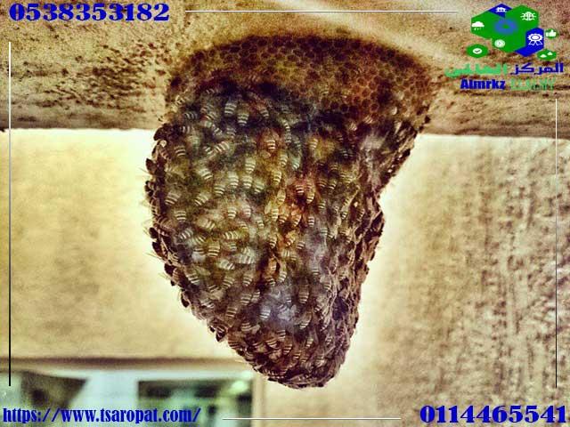 ما سبب ظهور النحل في المنزل, على ماذا يدل وجود خلية النحل في المنزل, شركة المركز العالمي