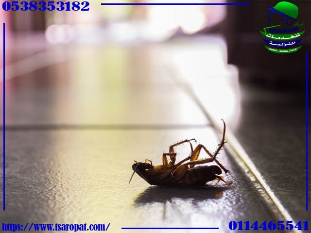 كيف اتخلص من الصراصير في البوتجاز, كيف اتخلص من الصراصير في البوتجاز, شركة المركز العالمي