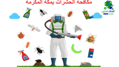 ارقام شركات مكافحة الحشرات بمكة, ارقام شركات مكافحة الحشرات بمكة, شركة المركز العالمي