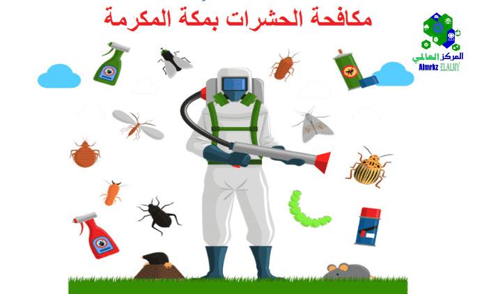 شركات مكافحة الحشرات بمكة