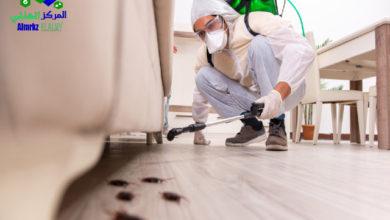 رش حشرات بالرياض, تعرف على أبرز خدمات شركة رش حشرات بالرياض, شركة المركز العالمي