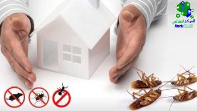 شركة مكافحة الحشرات, شركة مكافحة الحشرات بجدة لإبادة أنواع الحشرات المختلفة, شركة المركز العالمي