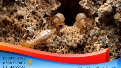شركة ابادة النمل الابيض بالرياض, شركة ابادة النمل الابيض بالرياض, شركة المركز العالمي