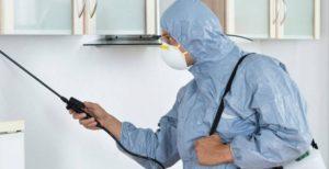 رش المنازل بالمبيدات الحشرية