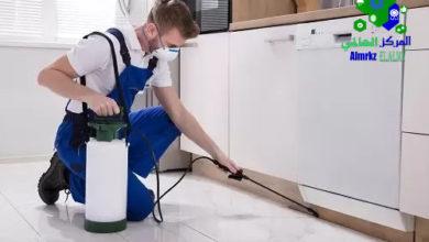 التخلص من الحشرات الزاحفة في المنزل