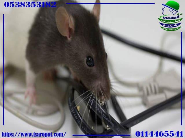 سم فئران طبيعي