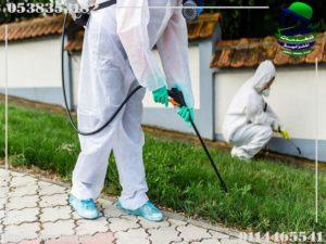 أسباب ظهور الحشرات في المنزل