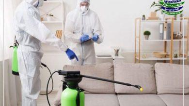 أفضل شركة رش مبيدات بالرياض 2021 مع الضمان