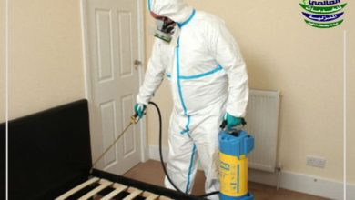 شركة مكافحة الحشرات المنزلية